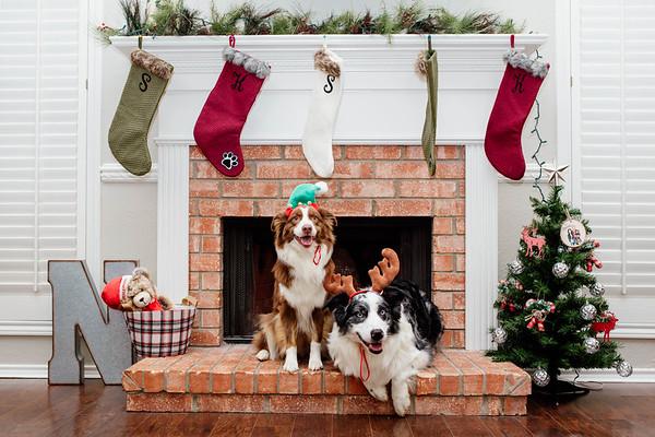 Neuse Christmas