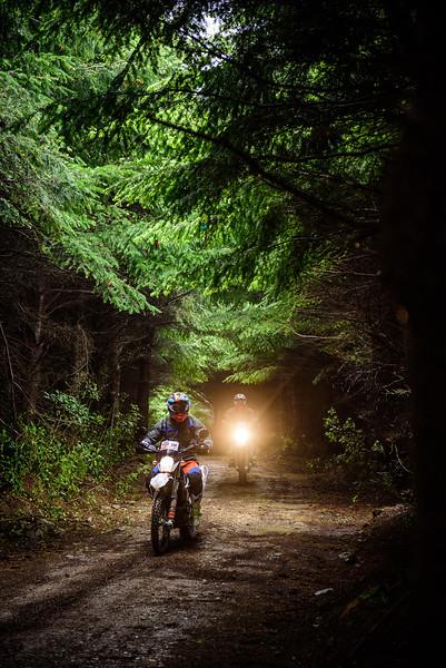 2019 KTM New Zealand Adventure Rallye (298).jpg