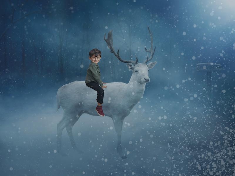paul reindeer.jpg