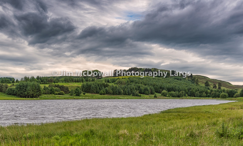 Piperdam Lake & Forrest in Scotland in Scotland under a rainy sky.