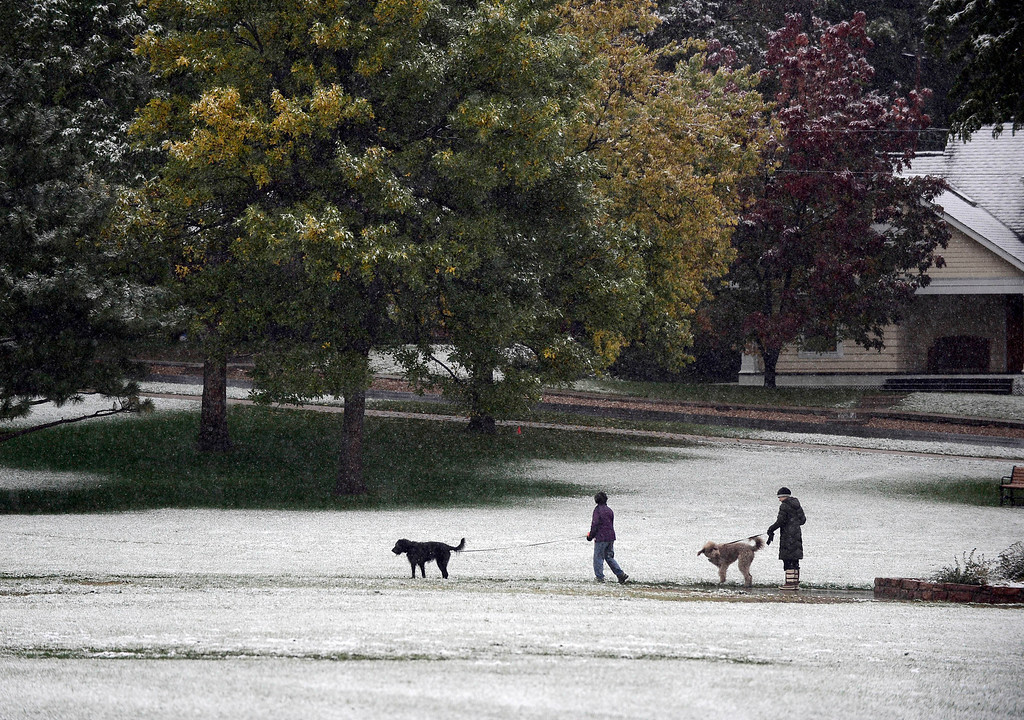 . Dog walkers in North Boulder Park  in Boulder on Friday 4, 2013.  Photo by Paul Aiken, Boulder Daily Camera