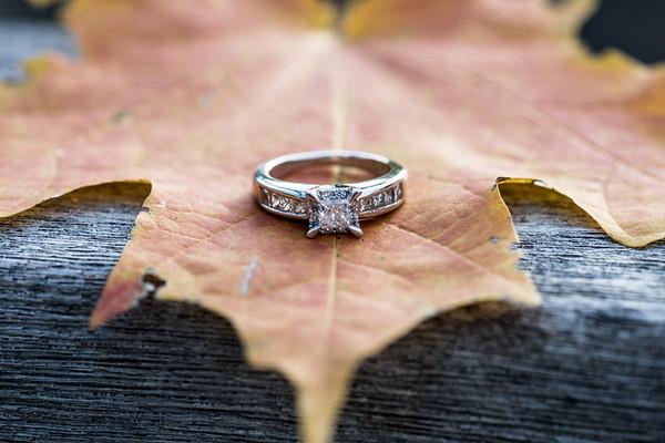 Leeanne & Lucion Engagement