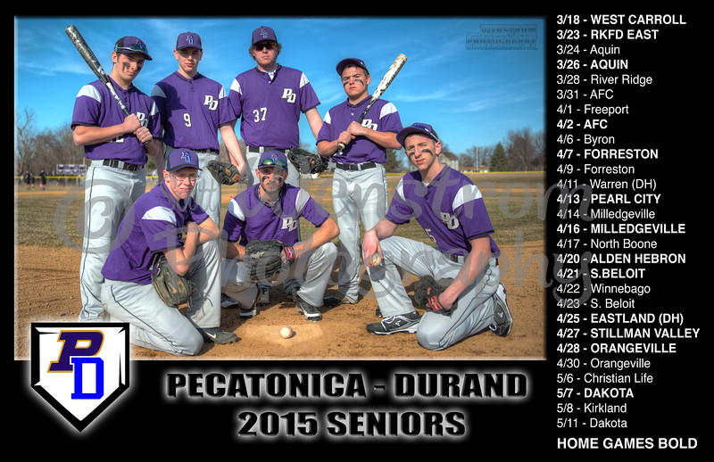 pd baseball 2015.jpg