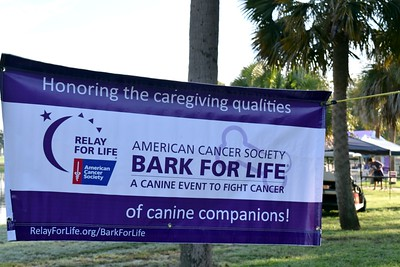 172: 2016 Volusia County Bark For Life