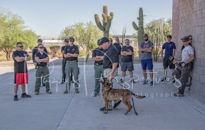 Redefining the Decoy - MCSO 2016
