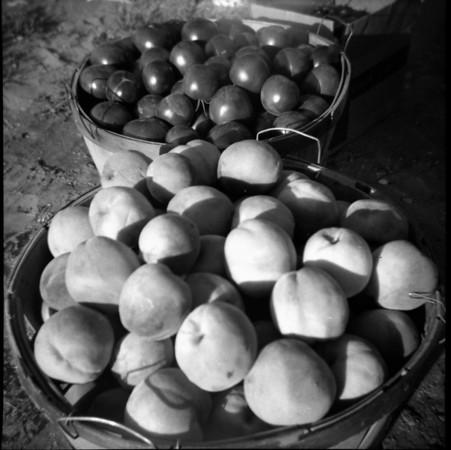1-a-Peaches & Apples.jpg
