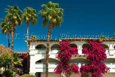 Palm Springs, Best Western Las Brisas Hotel
