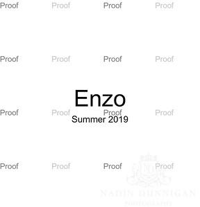 20190831 Enzo Book