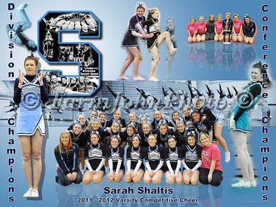 Sarah Shaltis Collage Review