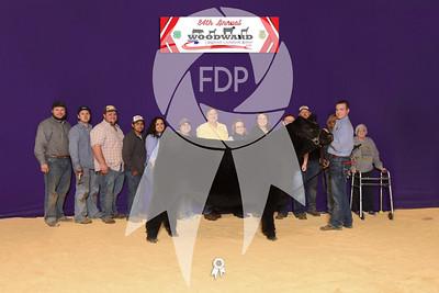Northwest District Livestock Show - Woodward