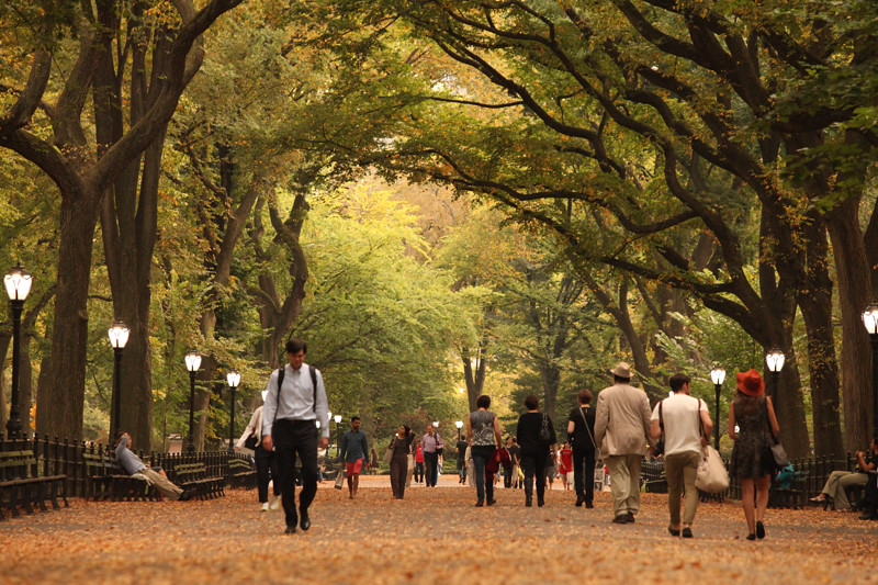 centralpark_IMG_8639.jpg