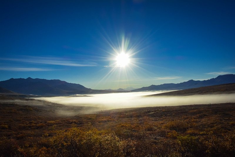 Denali-National-Park-65.jpg