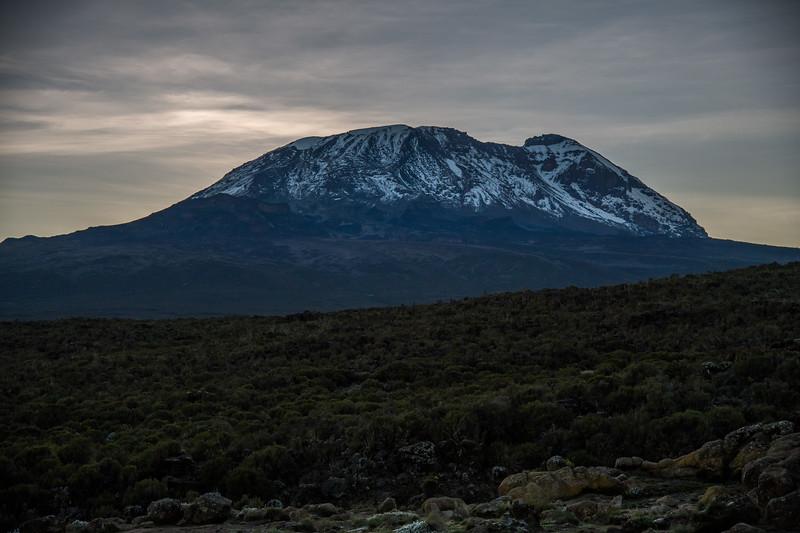 Kilimanjaro_Feb_2018-10.jpg