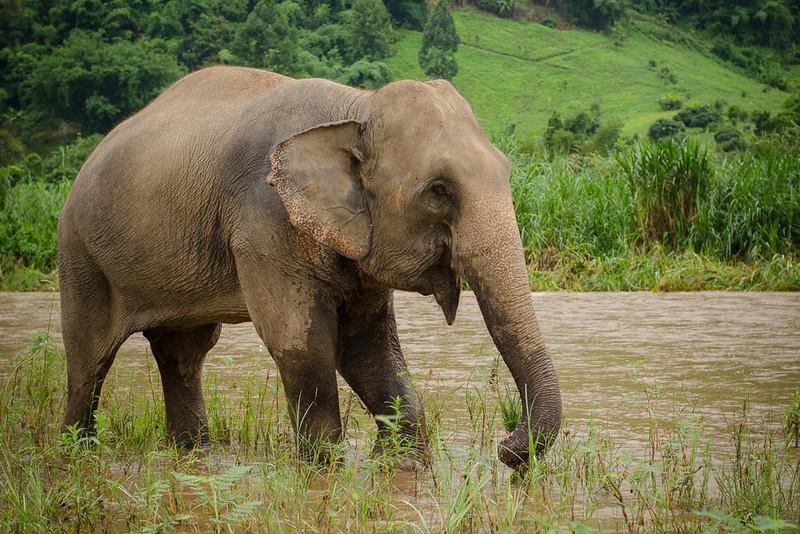 Thailand-Photo-Workshop-Naomi-8732.jpg