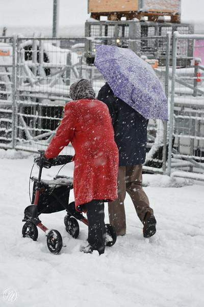20171210 Sneeuw in Zoetermeer