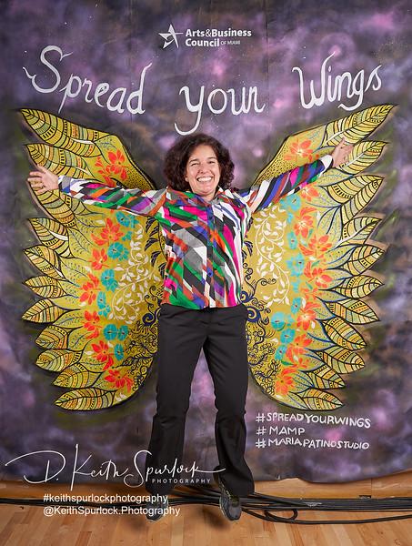 DS905225 MAMP2019-Wings.jpg
