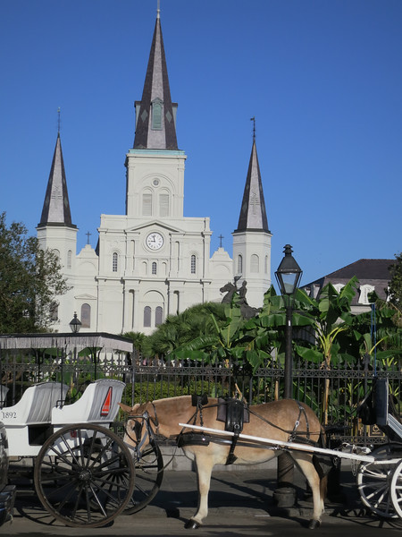 2012-10 New OrleansIMG_1856 - 2012-10-24 at 08-57-14-16.jpg