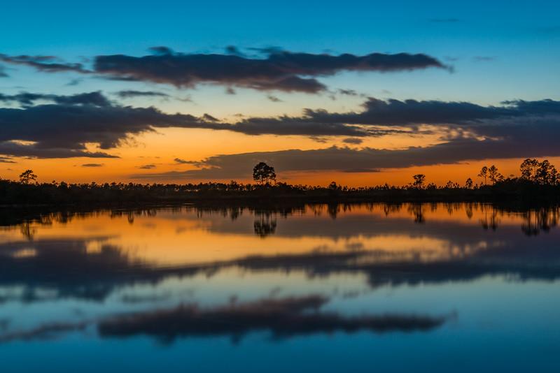 Everglades (15 of 37).jpg