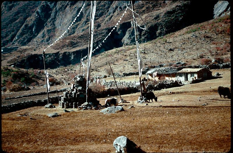 Nepal1_092.jpg