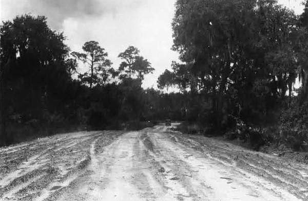 1928-Trout River Blvd.jpg