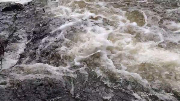 Eno River, NC