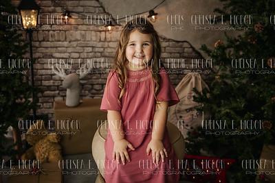 Hensley-Christmas Mini