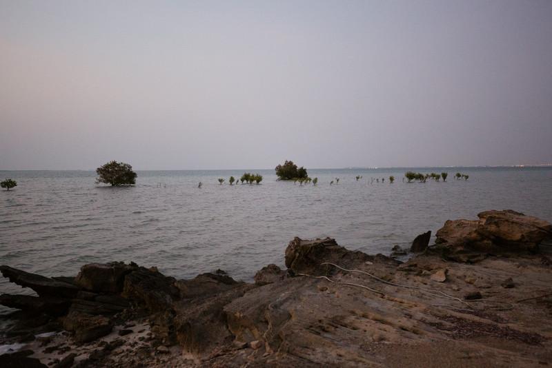 AP141879_Fahid Island_024.jpg