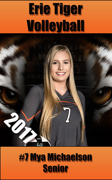 2017 Erie Volleyball Senior Banners