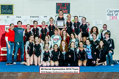 HS Sports - Gymnastics - Badger Conference - Feb 18, 2016