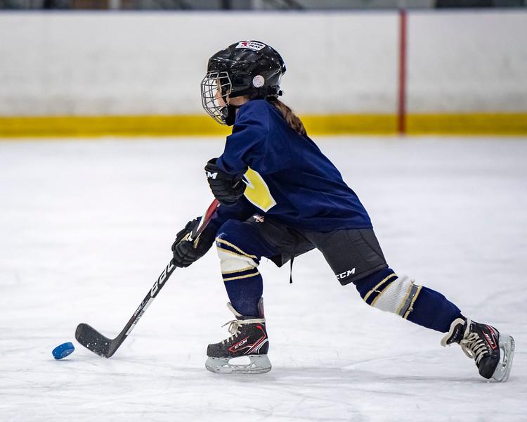 2019-02-04-Ryan-Naughton-Hockey-112.jpg