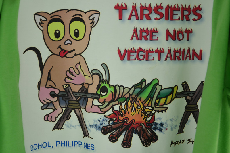 DSC_7149-tarsiers-are-not-vegetarian.JPG