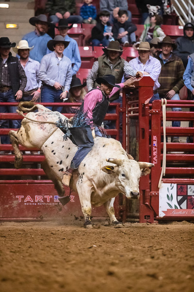 Golden Spike Rodeo