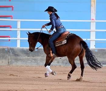 TAMWORTH REINING HORSE ASSOCIATION 2019 COUNTRY CHAMPIONSHIPS