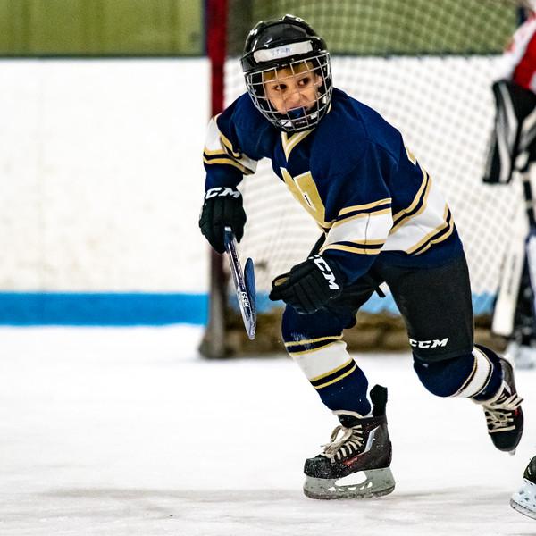2019-Squirt Hockey-Tournament-132.jpg