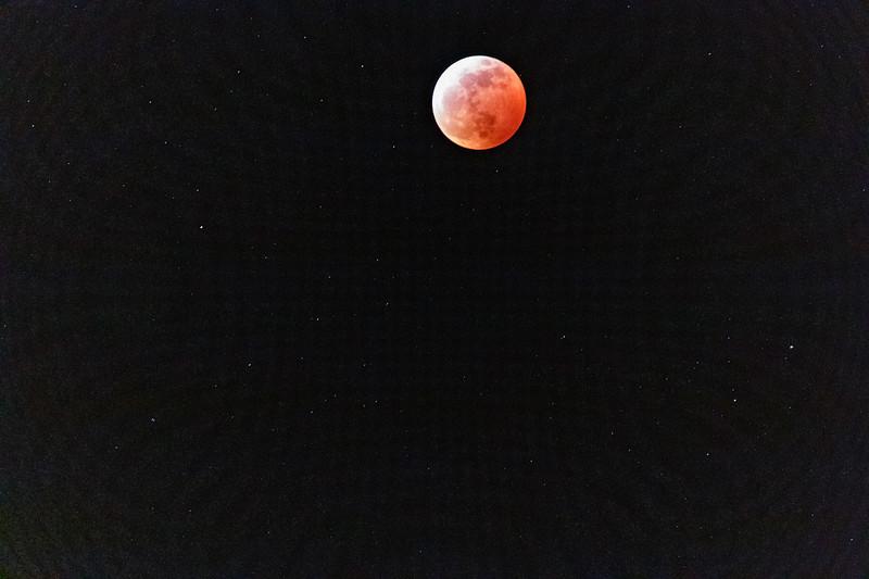 LauriMiller-TotalLunarEclipse2019-01