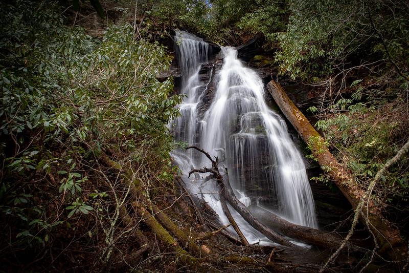 Avery Creek-Buckwheat Knob Loop, Transylvania County (2-16-19)