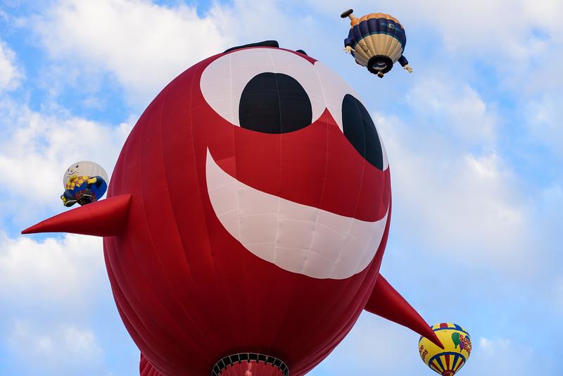 SpecialShapeRodeo_ABQ_BalloonFiesta-8.jpg