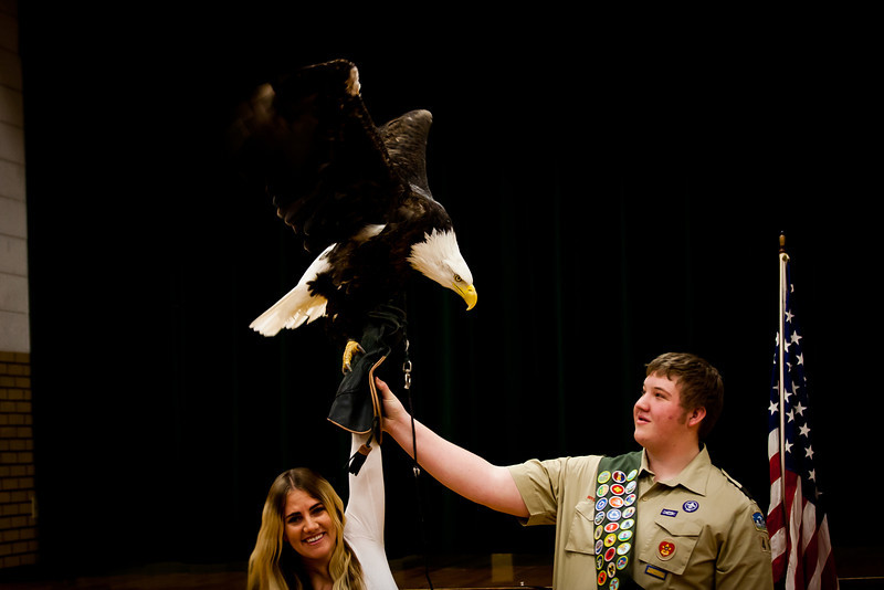 martin eagle-41.jpg