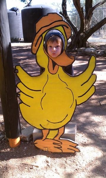 Austin Zoo | Oct 29, 2011