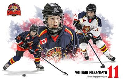 Custom Posters Portfolio - Hockey
