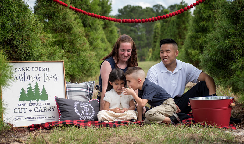 Phan family secret.jpg