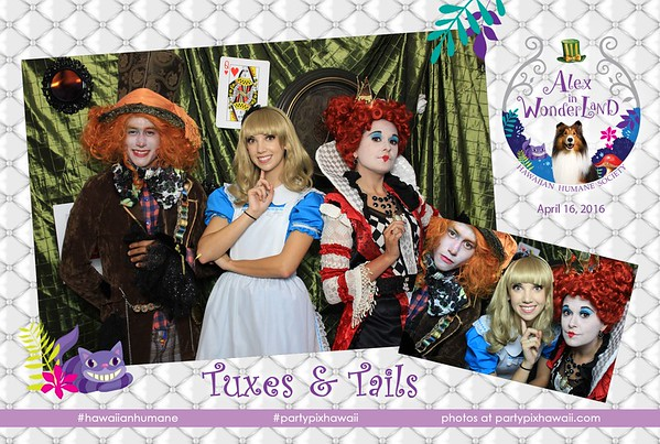 HHS Tuxes & Tails 2016 (Mini Open Air Photo Booth)