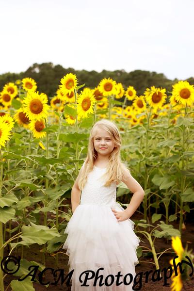 Bryn - Sunflower Field