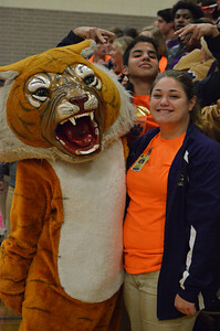 Orange You Glad to be a Tiger