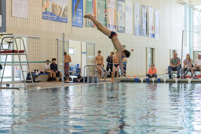KSMetz_2017Nov29_SHS Swimming8373.jpg
