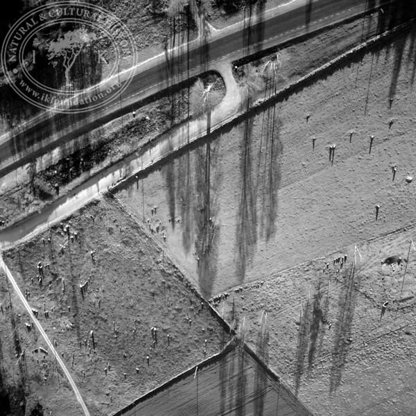 Vätteryd grave field | EE.0248