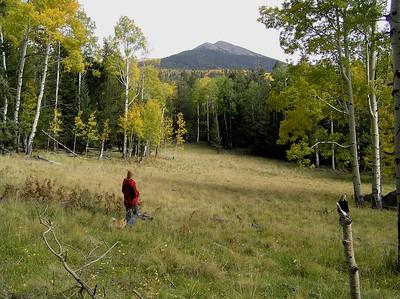 Kachina Peaks Wilderness - Sep 2006