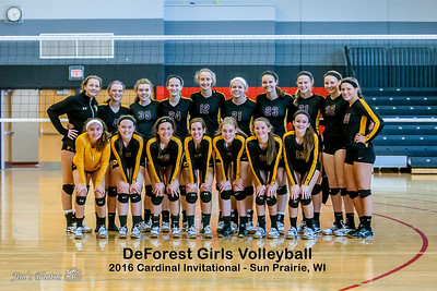 2016 High School Volleyball