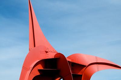 Flowers, Sculpture Park, Tilth, PSSO