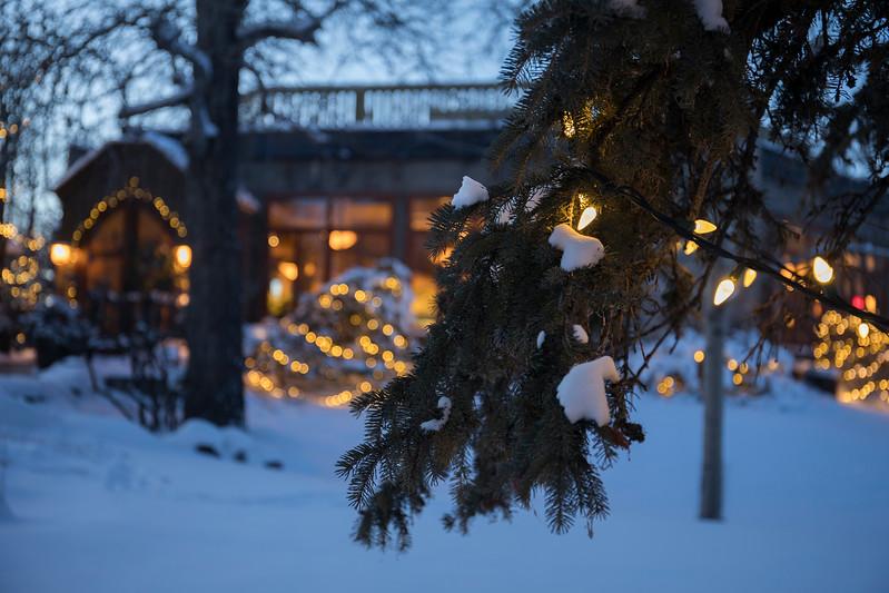 RiverCafe_Winter_ZHT2496.jpg
